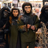 Cosplay of THE PLANET OF THE APES
